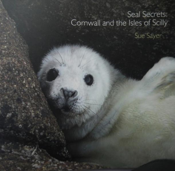 Seal Secrets