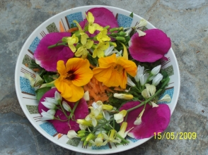 FG salad with edible flowers